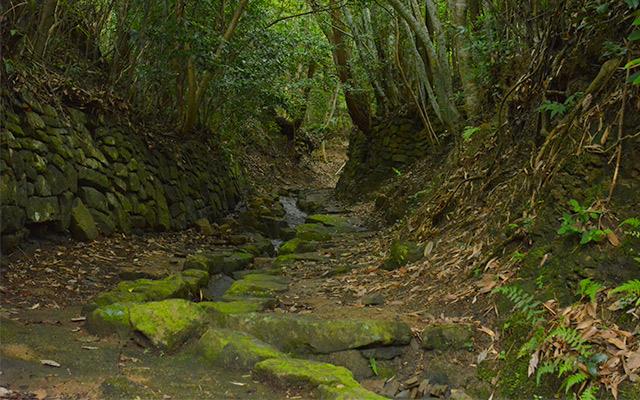 世界遺産 熊野古道「大辺路」