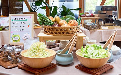 地元野菜の新鮮サラダビュッフェ